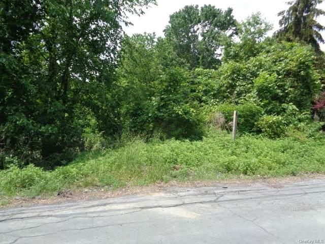 49 Jupiter Road, Highland Mills, NY 10930 (MLS #H6120884) :: Carollo Real Estate