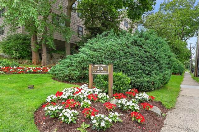 216 Purchase Street M, Rye, NY 10580 (MLS #H6121110) :: McAteer & Will Estates | Keller Williams Real Estate
