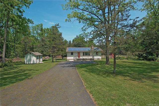66 Ryerson Road, Warwick, NY 10990 (MLS #H6121139) :: Carollo Real Estate