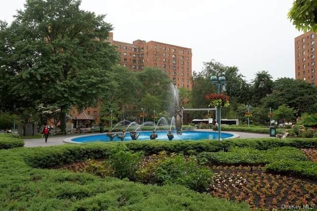 1460 Parkchester Road 3F, Bronx, NY 10462 (MLS #H6121200) :: Carollo Real Estate