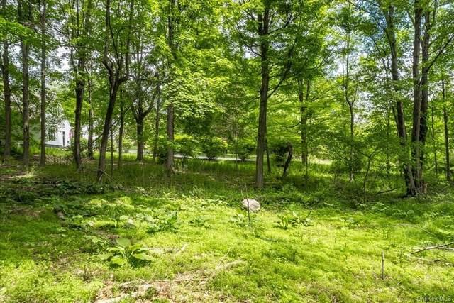0 Smith Road, Poughkeepsie, NY 12603 (MLS #H6121215) :: Carollo Real Estate