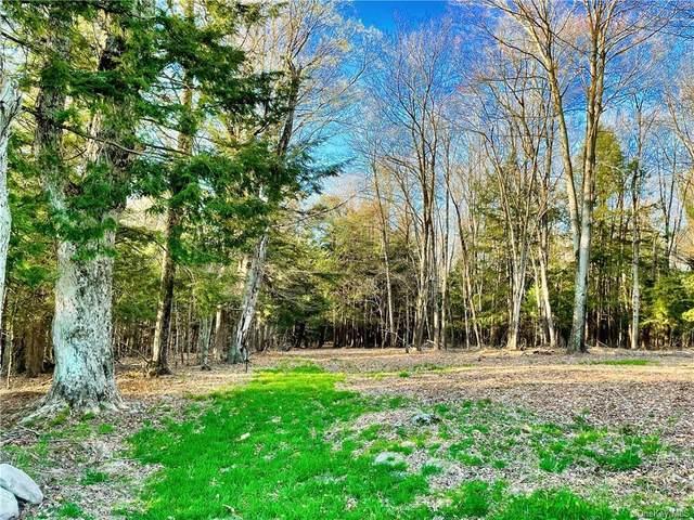 Jaketown Road Tr 52, Bethel, NY 12720 (MLS #H6121295) :: Carollo Real Estate