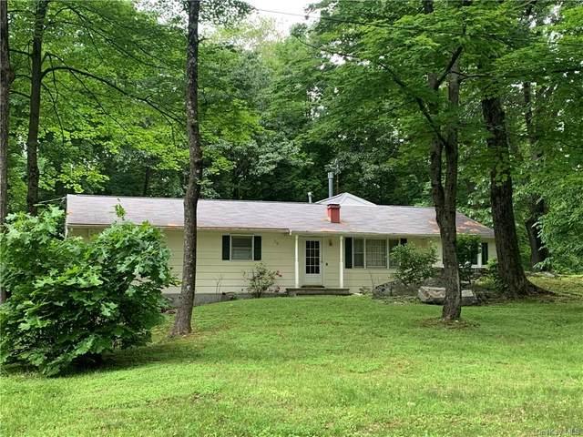 26 Ervin Drive, Wappingers Falls, NY 12590 (MLS #H6121327) :: Carollo Real Estate
