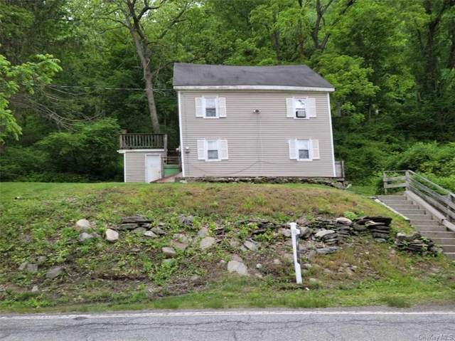 31 Old Route 22, Wassaic, NY 12592 (MLS #H6121367) :: Cronin & Company Real Estate