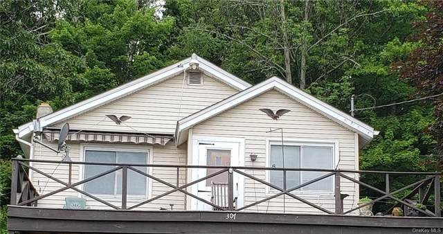 307 Roosa Gap Road, Bloomingburg, NY 12721 (MLS #H6121377) :: Barbara Carter Team