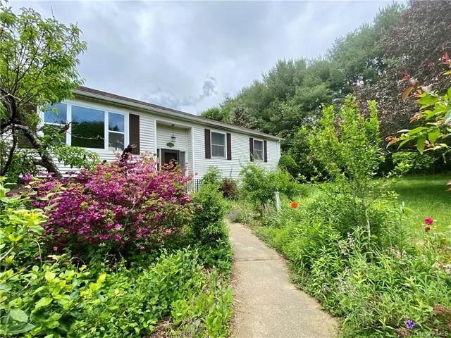27 Hi View Drive, Wingdale, NY 12594 (MLS #H6121379) :: RE/MAX RoNIN