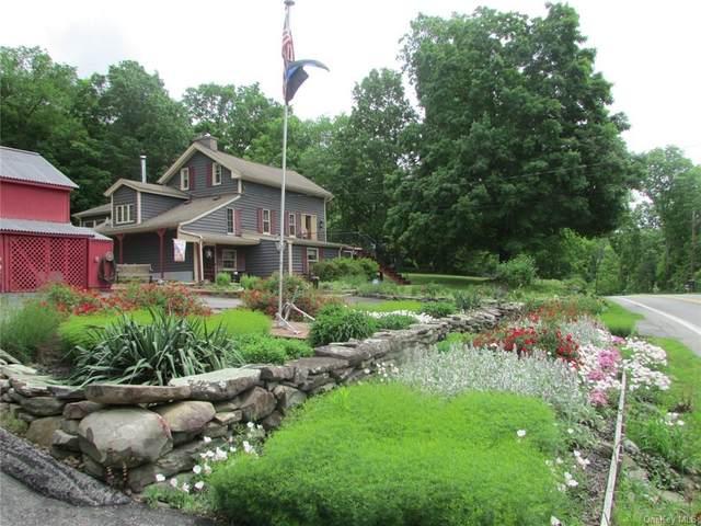 123 Orrs Mills Road, Salisbury Mills, NY 12518 (MLS #H6121409) :: Corcoran Baer & McIntosh