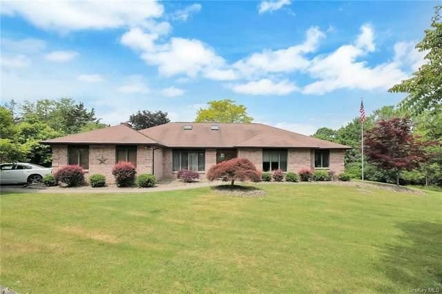 220 Oxford Road, Chester, NY 10918 (MLS #H6121421) :: Carollo Real Estate