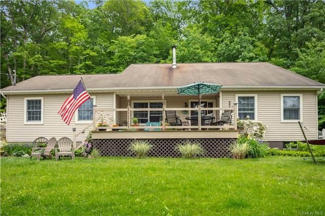270 Creek Road, Pleasant Valley, NY 12569 (MLS #H6121423) :: Corcoran Baer & McIntosh