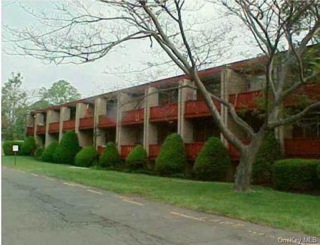 440 Viola Road #14, Spring Valley, NY 10977 (MLS #H6121485) :: RE/MAX RoNIN