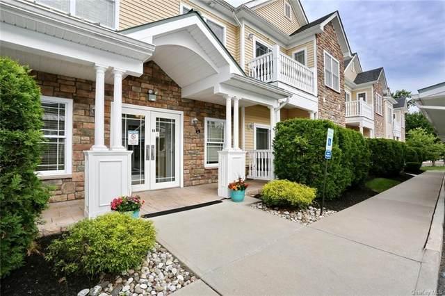 1103 Views Way, Pomona, NY 10970 (MLS #H6121560) :: Goldstar Premier Properties