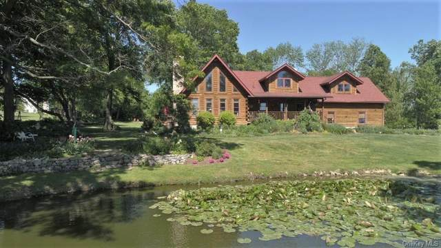 80 County Route 62, Westtown, NY 10998 (MLS #H6121579) :: RE/MAX RoNIN