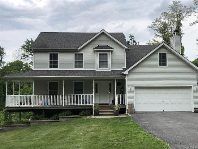 199 Stormville Mountain Road, Stormville, NY 12582 (MLS #H6121583) :: RE/MAX RoNIN
