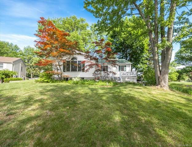 10 Crabapple Court, Wappingers Falls, NY 12590 (MLS #H6121584) :: RE/MAX RoNIN