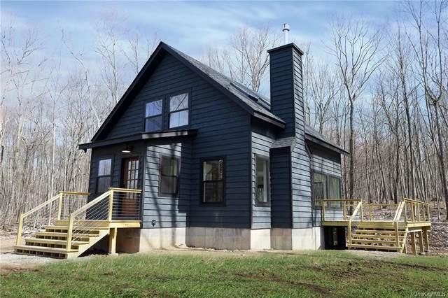 Lot 11 Overlook Circle, North Branch, NY 12736 (MLS #H6121602) :: Howard Hanna Rand Realty