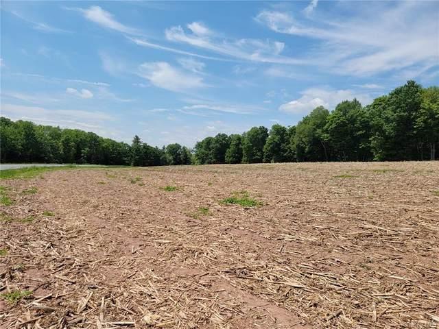 County Road 115, Cochecton, NY 12726 (MLS #H6121616) :: Carollo Real Estate