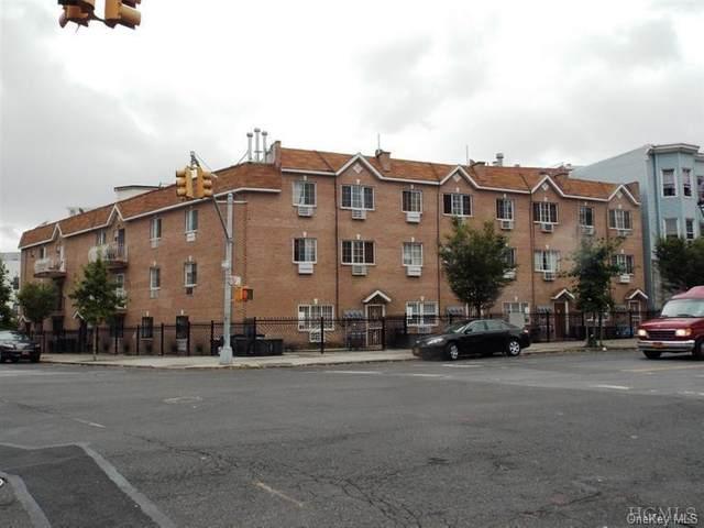 1238 Prospect Avenue 1B, Bronx, NY 10459 (MLS #H6121710) :: Goldstar Premier Properties