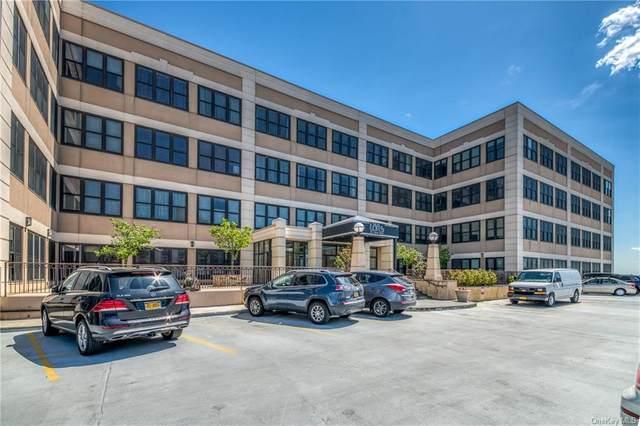 100 New Roc #407, New Rochelle, NY 10801 (MLS #H6121942) :: Carollo Real Estate