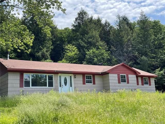 16 John Gray Road, Livingston Manor, NY 12758 (MLS #H6122015) :: Carollo Real Estate