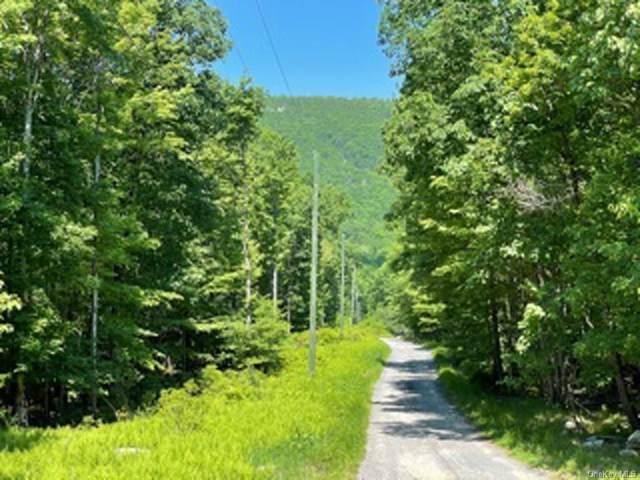 Schneller Lane, Pine Bush, NY 12566 (MLS #H6122105) :: Corcoran Baer & McIntosh