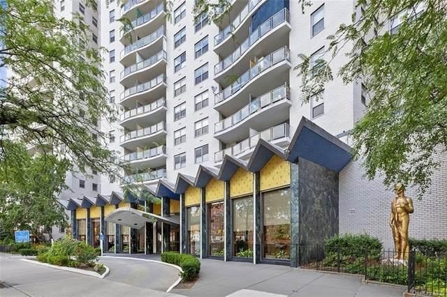 1020 Grand Concourse 19W, Bronx, NY 10451 (MLS #H6122233) :: Howard Hanna Rand Realty