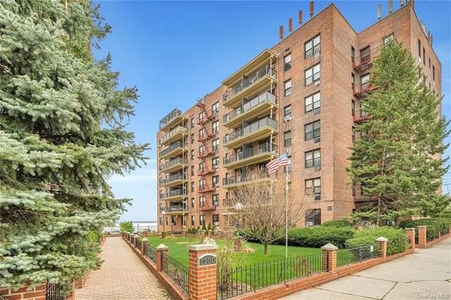 1130 Stadium Avenue 5F, Bronx, NY 10465 (MLS #H6122259) :: Nicole Burke, MBA | Charles Rutenberg Realty