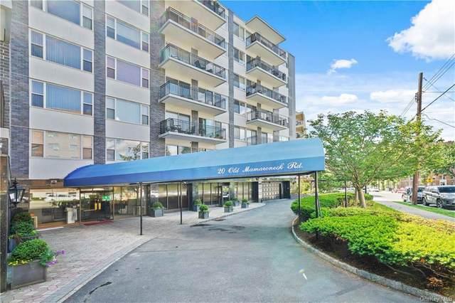 20 Old Mamaroneck Road 3C, White Plains, NY 10605 (MLS #H6122297) :: Carollo Real Estate