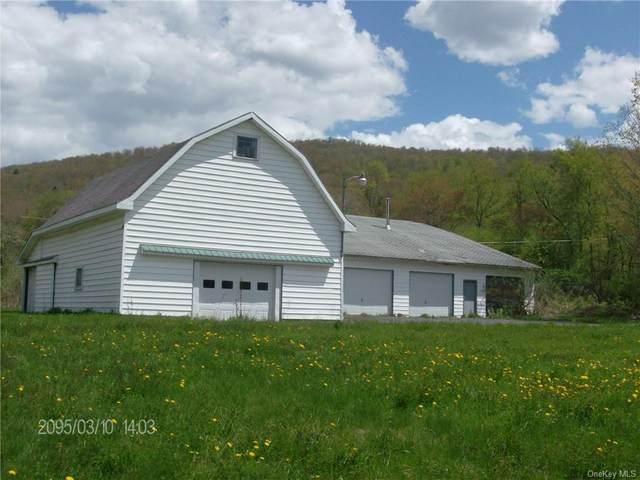 County Highway 7 Highway, Roscoe, NY 12776 (MLS #H6122356) :: Nicole Burke, MBA | Charles Rutenberg Realty