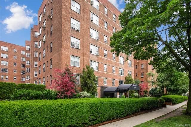 12 Westchester Avenue 3L, White Plains, NY 10601 (MLS #H6122375) :: Shalini Schetty Team