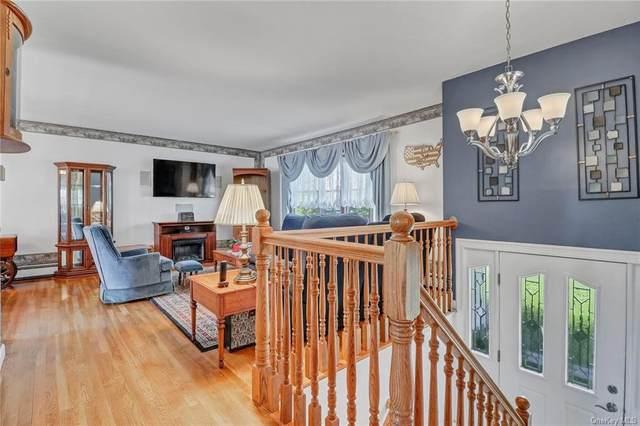 18 Cimorelli Drive, New Windsor, NY 12553 (MLS #H6122392) :: RE/MAX RoNIN