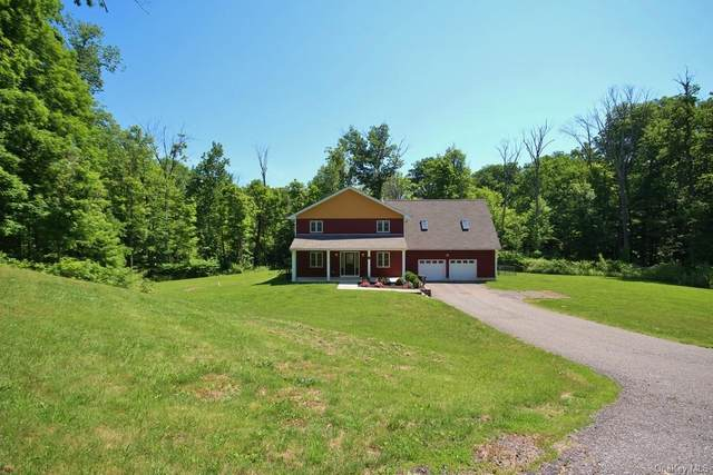 451 Maple Hill Drive, Mountainville, NY 10953 (MLS #H6122493) :: Corcoran Baer & McIntosh