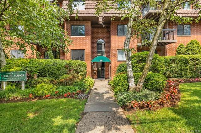 39 Sterling Avenue #10, White Plains, NY 10606 (MLS #H6122546) :: Goldstar Premier Properties