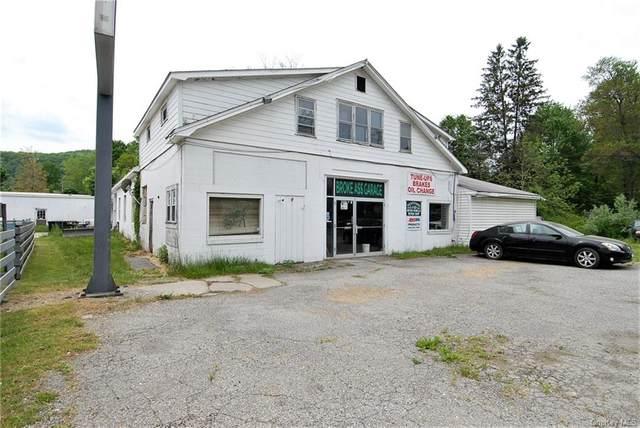 4827 Route 22, Amenia, NY 12501 (MLS #H6122591) :: Cronin & Company Real Estate