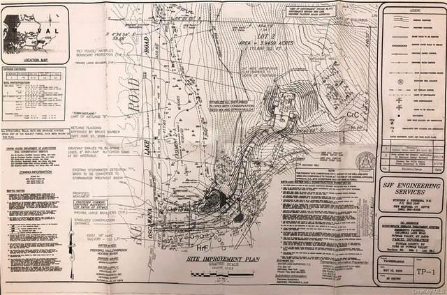 Lot 39.2 Oscawana Lake Road, Putnam Valley, NY 10579 (MLS #H6122642) :: RE/MAX RoNIN