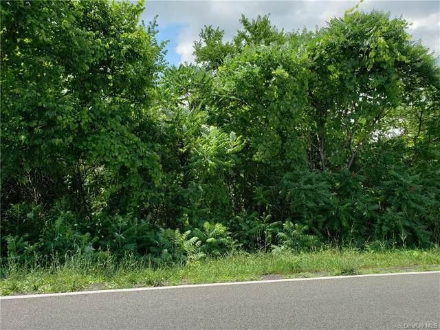 Milton Turnpike, Marlboro, NY 12542 (MLS #H6122664) :: Carollo Real Estate
