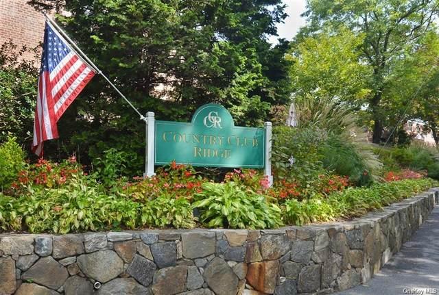 131 E Hartsdale Avenue 1A, Hartsdale, NY 10530 (MLS #H6122782) :: Carollo Real Estate