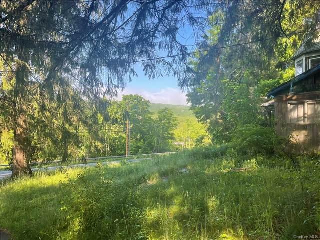 3428 State Route 52, White Sulphur Spring, NY 12787 (MLS #H6122786) :: The McGovern Caplicki Team