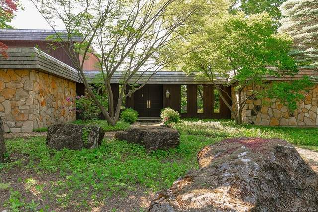 11 Hornbeck Ridge, Poughkeepsie, NY 12603 (MLS #H6122797) :: Corcoran Baer & McIntosh