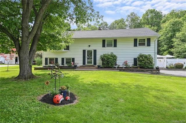 723 Jackson Avenue, New Windsor, NY 12553 (MLS #H6122895) :: Cronin & Company Real Estate