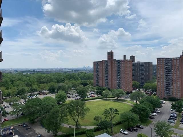 875 Morrison Avenue 15B, Bronx, NY 10473 (MLS #H6122903) :: Shalini Schetty Team