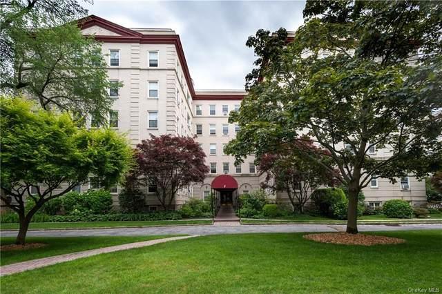 4 Park Lane 4F, Mount Vernon, NY 10552 (MLS #H6122915) :: Goldstar Premier Properties