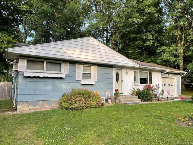 14 Elizabeth Lane, New Windsor, NY 12553 (MLS #H6122966) :: Cronin & Company Real Estate
