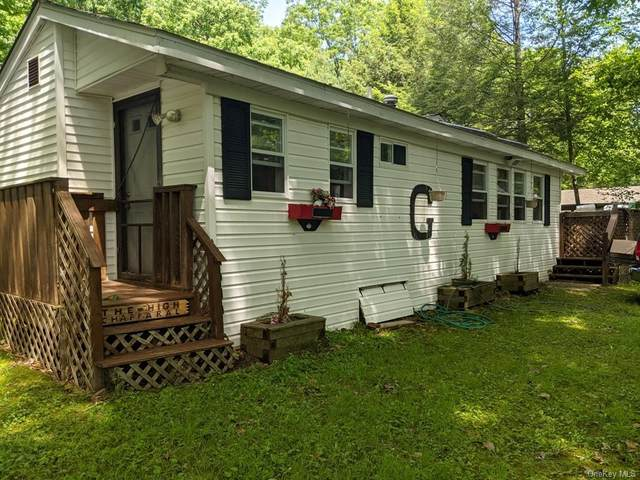 73 Delaware Trail, Glen Spey, NY 12737 (MLS #H6123126) :: Shalini Schetty Team