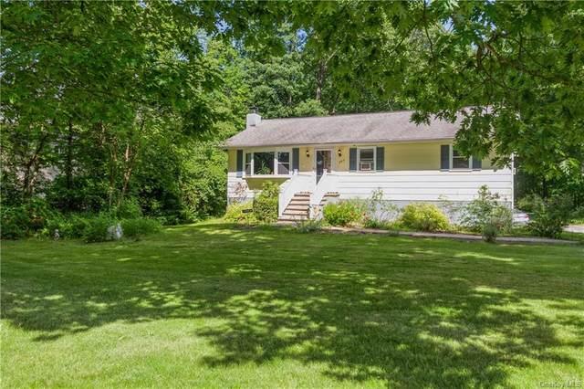 147 Booth Boulevard E, Wappingers Falls, NY 12590 (MLS #H6123155) :: Carollo Real Estate