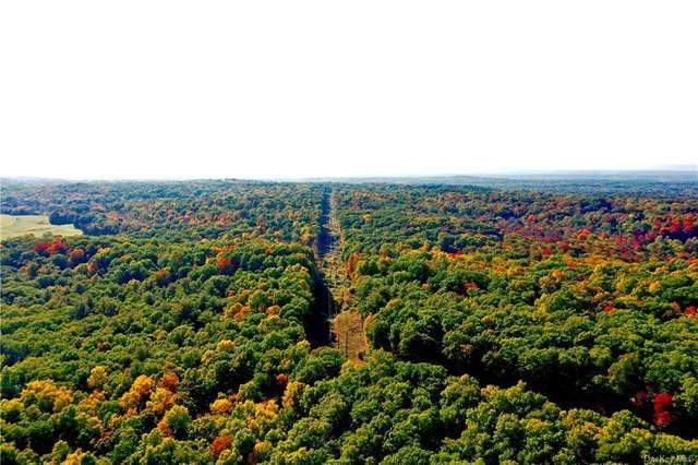 Route 308, Rhinebeck, NY 12572 (MLS #H6123253) :: Barbara Carter Team