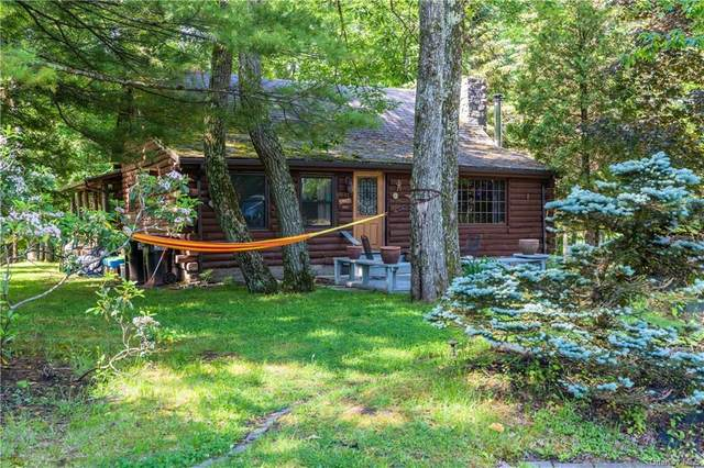 11 Picadilly Court, Rock Hill, NY 12775 (MLS #H6123364) :: Mark Boyland Real Estate Team