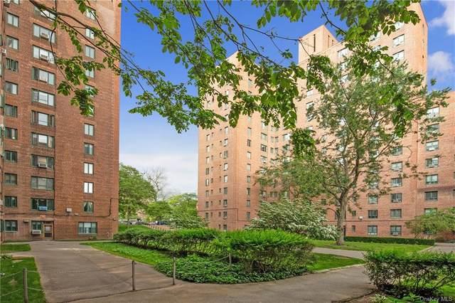 24 Metropolitan Oval 5E, Bronx, NY 10462 (MLS #H6123383) :: Mark Boyland Real Estate Team