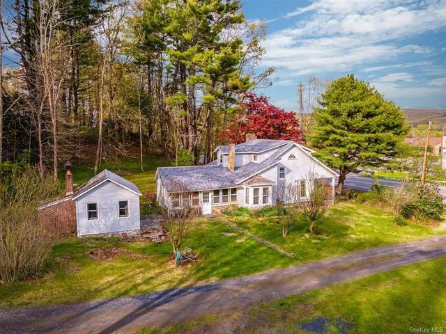 2931 State Route 209, Wurtsboro, NY 12790 (MLS #H6123476) :: Mark Boyland Real Estate Team