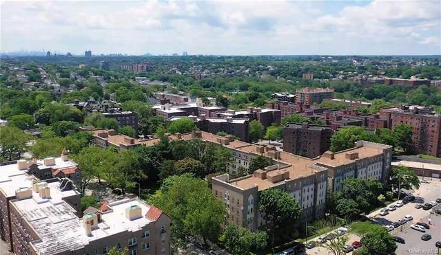 472 Gramatan Avenue 1B, Mount Vernon, NY 10552 (MLS #H6123491) :: Keller Williams Points North - Team Galligan