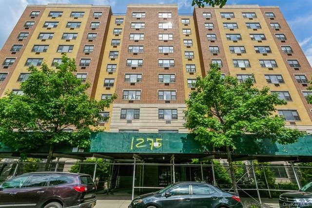 1275 Grant Avenue 5E, Bronx, NY 10456 (MLS #H6123495) :: Laurie Savino Realtor